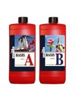 Mills Basis A+B